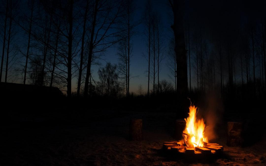 Melu on myrkkyä – metsästä hiljaisuutta aivojesi tähden