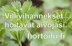 www.hortoilu.fi